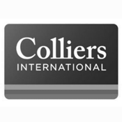 20-colliers